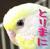 とりまに☆鳥のおもちゃ専門店